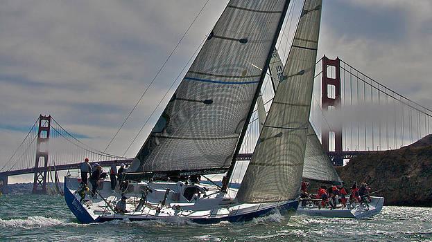 Steven Lapkin - Classic Bay Sailing