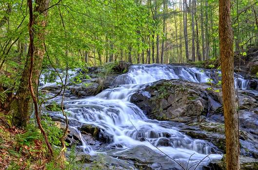 Clay Creek Falls by Bob Jackson