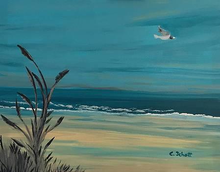 Clear Skies by Christina Schott