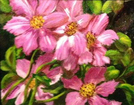 Clematis by Susan Hanning