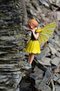 Linda Rae Cuthbertson - Cliff Hanger - Woodland Fairies