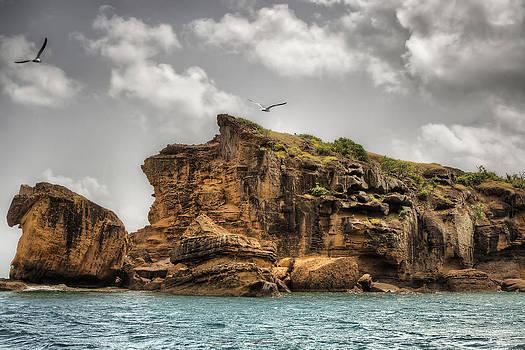 Cliff in Antigua by Pier Giorgio Mariani