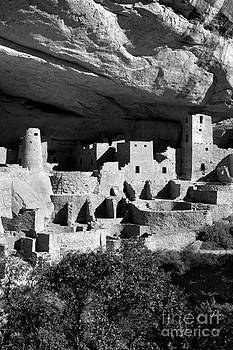 Douglas Taylor - CLIFF PALACE PORTRAIT - SHADES OF GREY