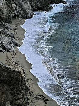 Cliffs and Surf Big Sur Coast by Elery Oxford