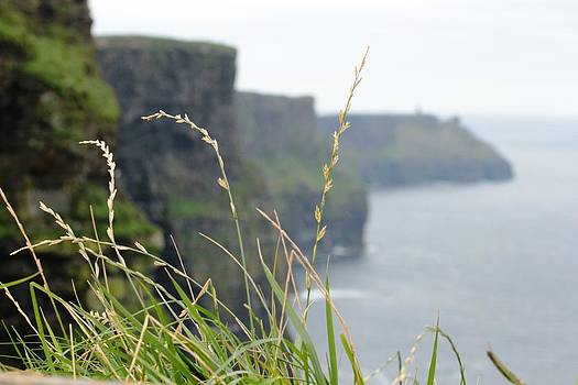 Cliffs of Moher by Carrie Todd