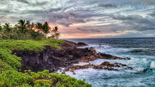 Cliffs of Pahoa by Beth Hughes