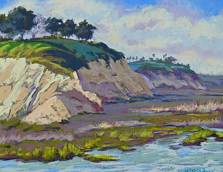 Cliffs of the Back Bay by Patricia Rose Ford