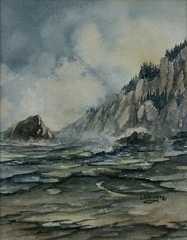 Cliffside by Lynne Wright