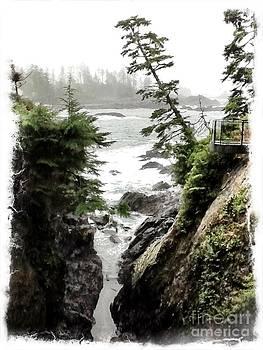 Cliffside by Tina Hannaford