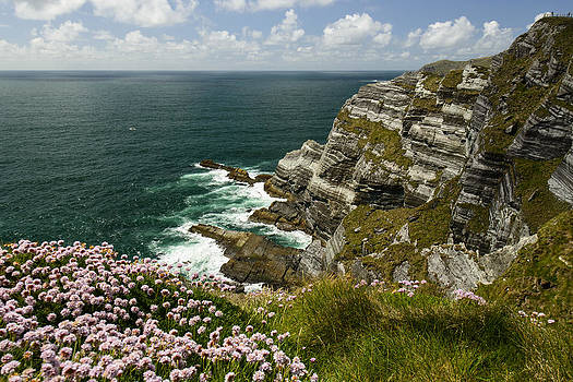 Cliffs of Kerry Ireland by Dick Wood