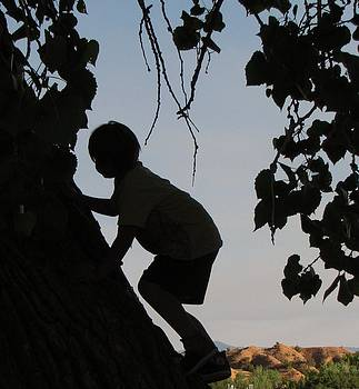 Climbing First Tree-Priceless by Feva  Fotos