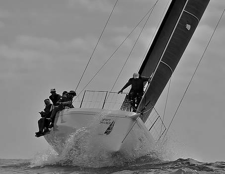 Steven Lapkin - Climbing the Wave