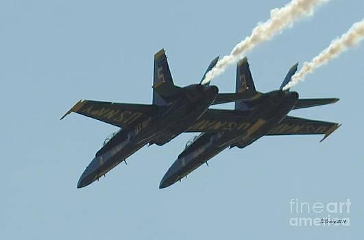 Close flight by Susan Stevens Crosby