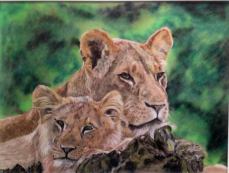 Mothers love by Tanya Patey