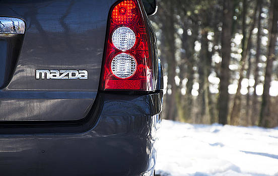 Newnow Photography By Vera Cepic - Close up of back side of Mazda Tribute in the mountain forest