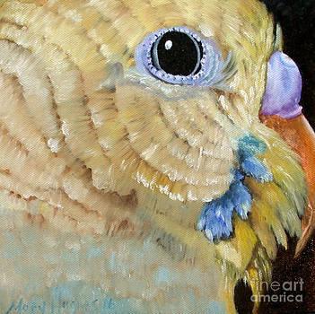 Close Up Parakeet by Mary Hughes