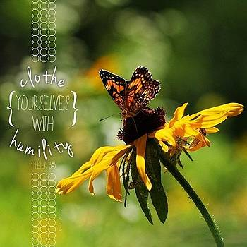 ..clothe Yourselves With Humility.. by Traci Beeson