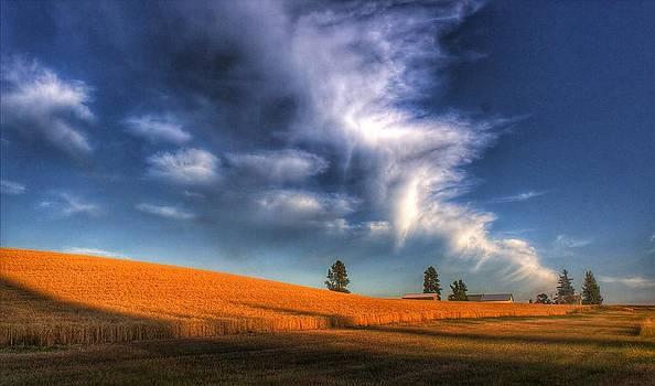 Cloud bolts by Beth Hughes