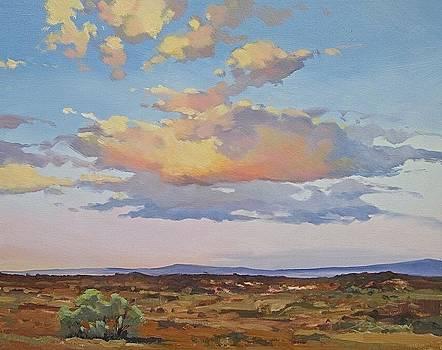 Cloud Cover by Lynne Fearman