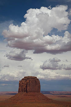 Cloud Mitten by Tony Santo