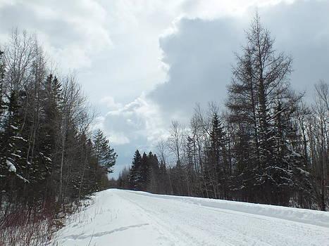 Clouded Trail by Gene Cyr