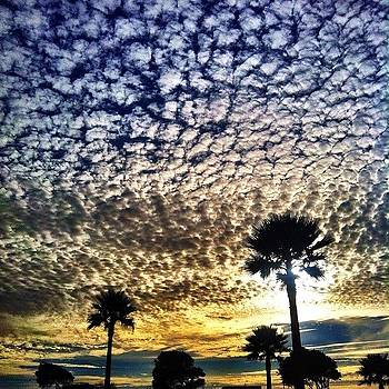 #cloudporn And #palmtrees Beautiful by Tristan Thames