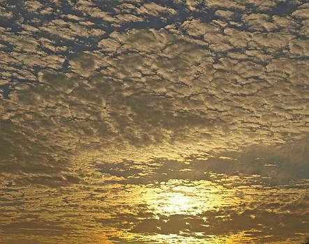 Clouds 5 by Virginia Zuelsdorf