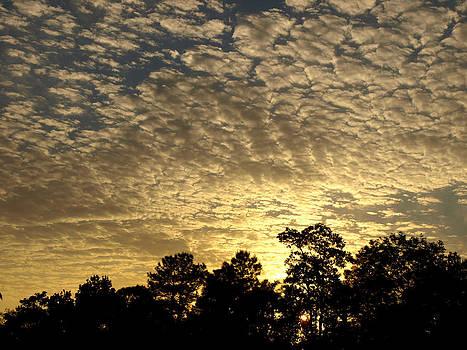 Clouds 6 by Virginia Zuelsdorf