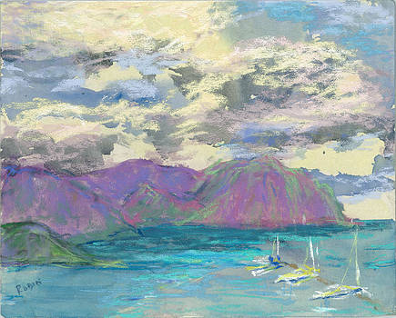 Clouds Above the Kaneohe Yacht Harbor by Jennifer Robin