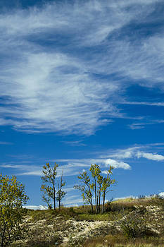 Clouds and Dune Trees by James Blackwell JR
