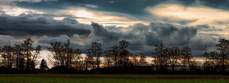 Clouds Behind the Trees by Rick Lawler