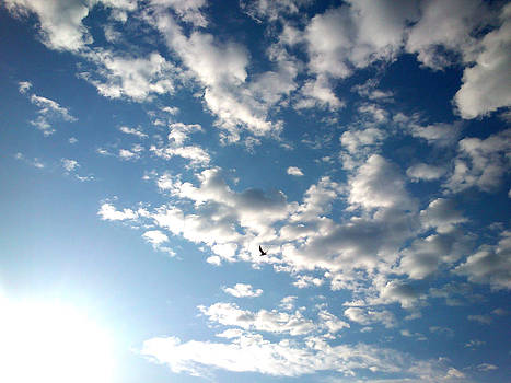 Clouds by Lucy D