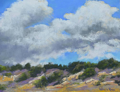 Clouds Over Abiqui Lake by Patricia Rose Ford