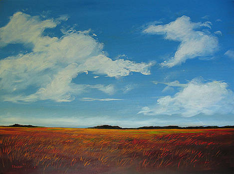 Clouds Over the Plains II by Patty Baker
