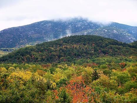 Gene Cyr - Cloudy Autumn Day