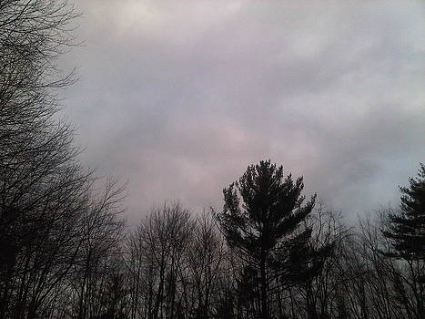Cloudy Day by Lorrie M Nelson