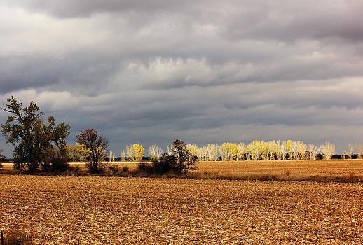 Cloudy Fall After by Robert Geier