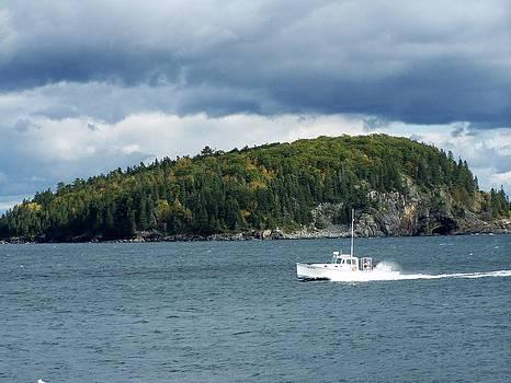 Gene Cyr - Cloudy Island