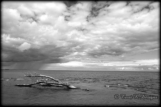 Cloudy over Lake Huron by Terri K Designs