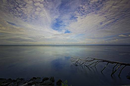Regina  Williams  - Cloudy Reflections