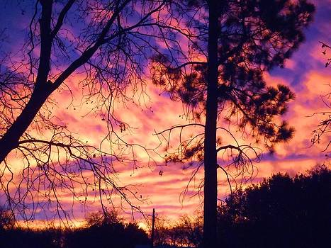 Cloudy Sunrise by Lorrie M Nelson