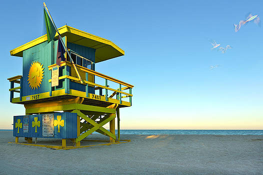 Clover Lifeguard House and Birds by Derek Latta