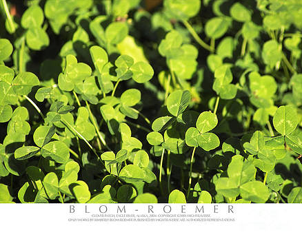 Clover Patch by Kimberly Blom-Roemer
