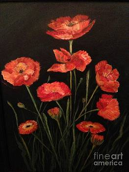 Cluster of red poppies by Phyllis Norris
