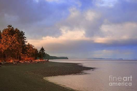 Cluxewe River by Gail Bridger