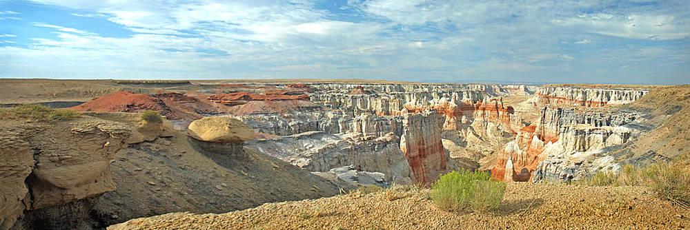 Jeff Brunton - Coal Mine Mesa 20