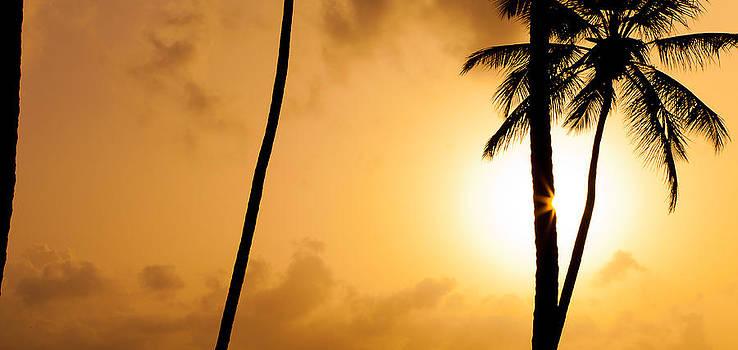 Sentio Photography - Coastal Dominican Republic Punta Cana 02