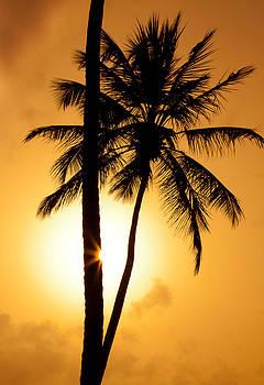 Sentio Photography - Coastal Dominican Republic Punta Cana 03