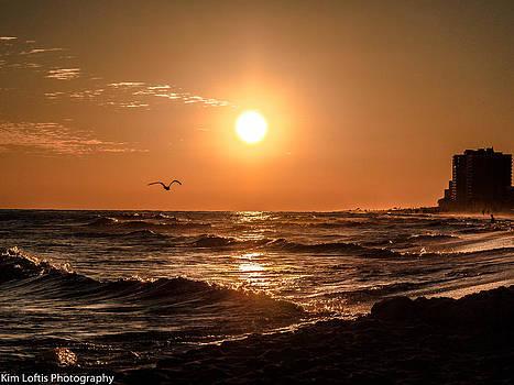 Coastal Dreams  by Kim Loftis