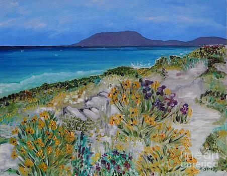 Caroline Street - Coastal Flora